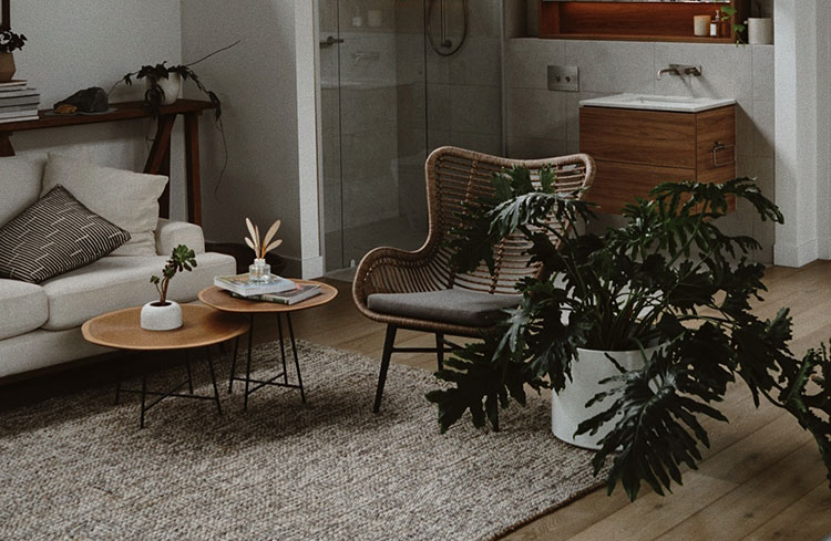 apartment styled with plants